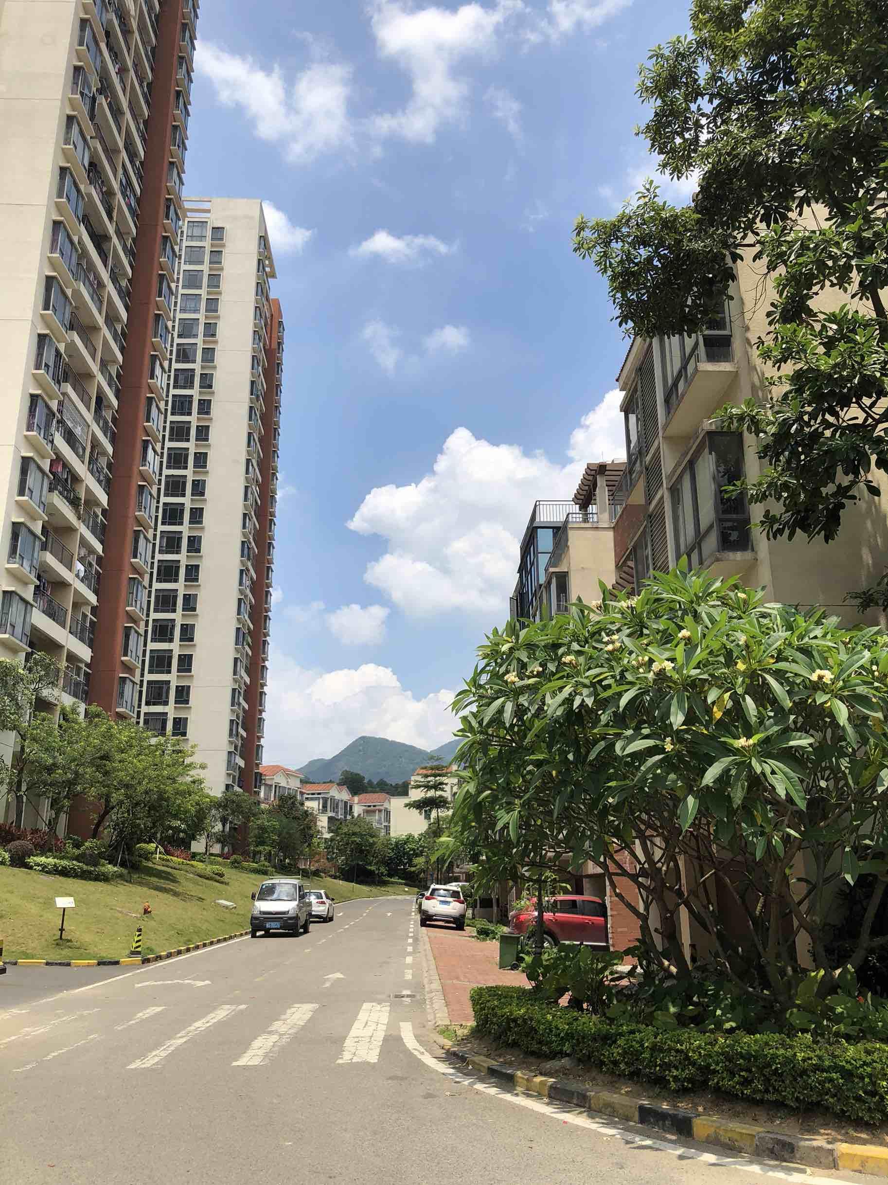 中惠香樟半岛一房一厅