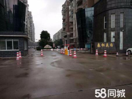 长江镇复式楼出售