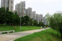 湘江世纪城个人出租成熟小区精装好楼层房屋