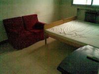 个人出租尖岭小区一室一厅