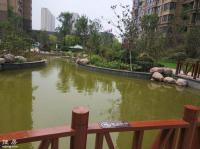 坤达祥龙城