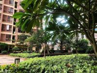 翡翠阳光城区中心梅塘西路3室2厅2卫精致户型
