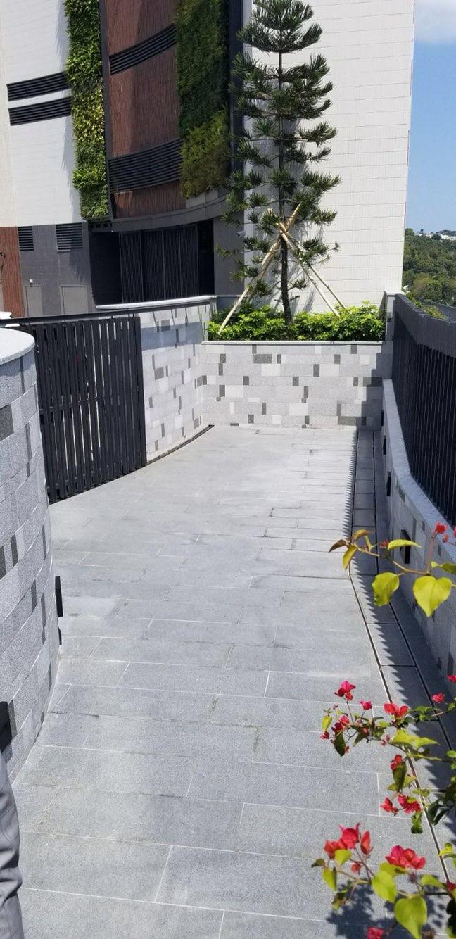 香港火炭半山豪宅