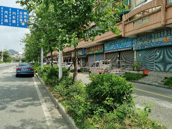 碧辉园临街商铺